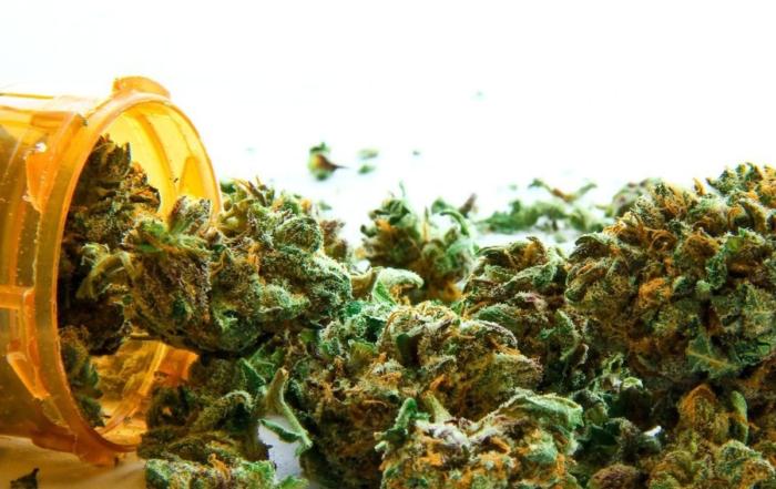 Recreational Cannabis - Employer Facts